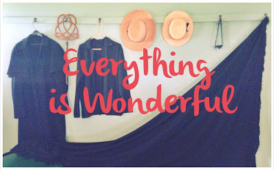 everything is wonderful banner blank